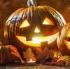 Griezeltocht tijdens de Halloweenperiode